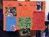 Conservation of Wildlife in School